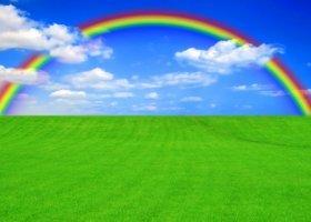 LGBT bardziej zieloni?