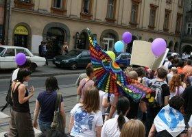 Poszukiwani świadkowie pobić po krakowskim Marszu