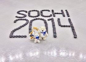 Amerykański Komitet Olimpijski: bezpieczeństwo najważniejsze