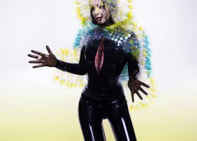 Kobiecy styczeń (Björk, Sleater-Kinney)
