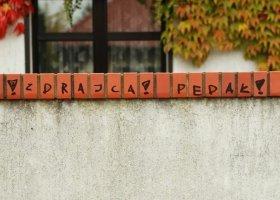 """""""Zdrajca"""" i """"pedał"""" na murze prezydenta Poznania"""