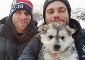 Gus Kenworthy i Matthew Wilkas adoptowali psa w Korei