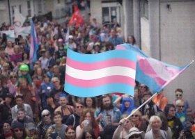 Powstała petycja o stworzenie emoji z flagą osób trans