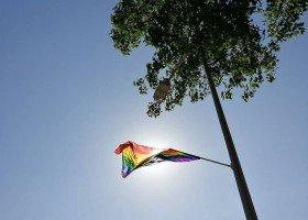 108 tęczowych flag na ulicach Zielonej Góry