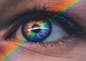 Znane osoby LGBT planują emigrację po ostatnich wyborach