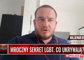 """Chemiczne wróżki, pedofilia i homofobia. """"Prawicowy gej"""" o siatce nielegalnego handlu hormonami"""